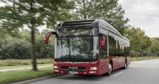 800 гибридных автобусов MAN