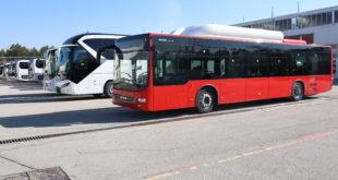 автобусы коронавирус