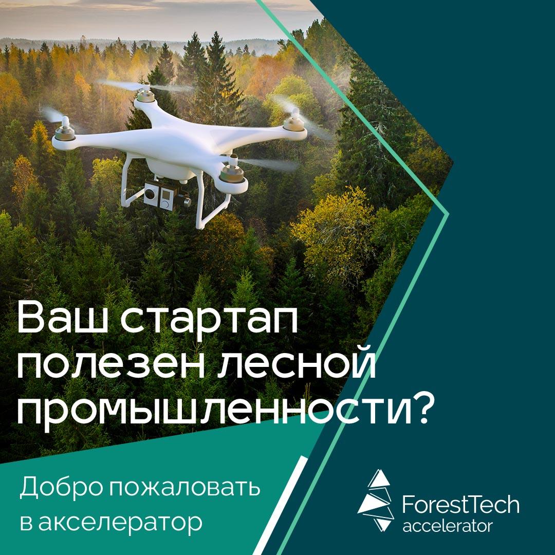 Запущен ForestTech Accelerator для внедрения передовых технологий в процесс добычи и переработки леса